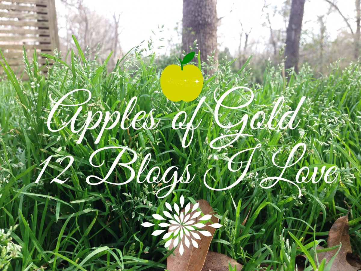 apples of gold: 12 blogs I love