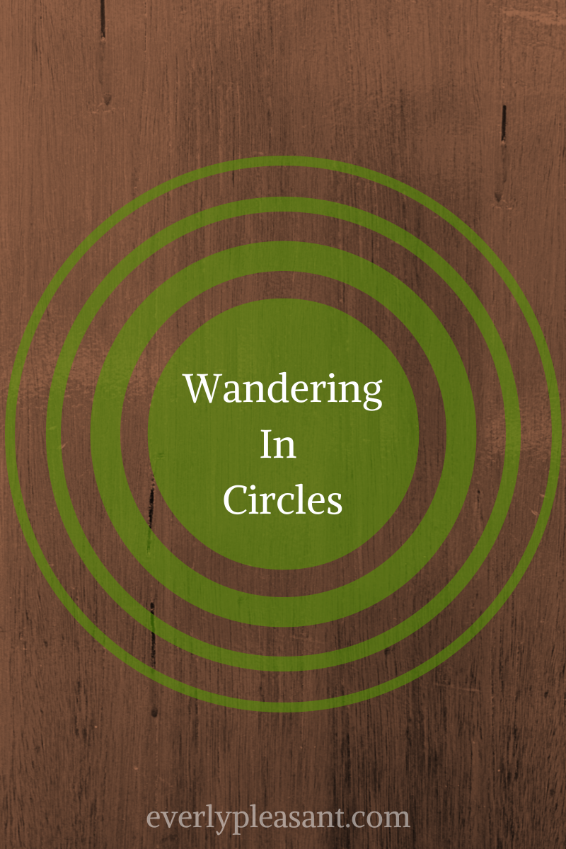 Wandering In Circles