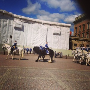 Changing of the Guard, Swedish National Palace